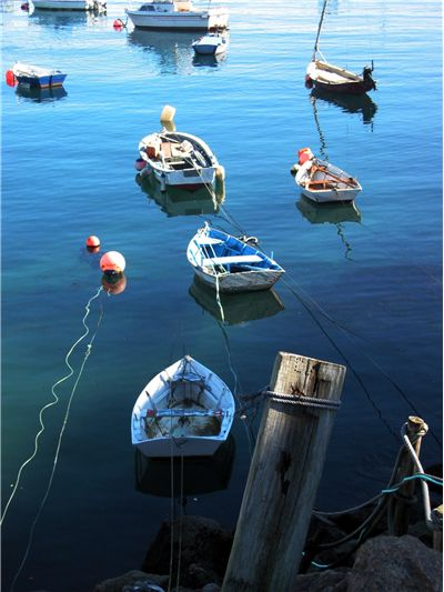 Picture Of Boats In The Fishing Port