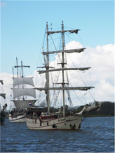 Picture Of White Sails